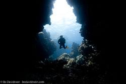 BD-100924-Fury-Shoal-2285-Homo-sapiens.-Linnaeus.-1758-[Diver].jpg